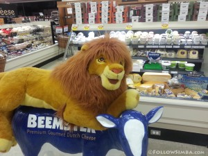 The Lion King - Douglas Simba taking a ride on the Beemster Cow in Supervalu on Davie St.
