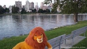Life size adult Simba from the Lion King plush made by Douglas Co. Inc. sitting on a park bench in Vanier park in Vancouver, BC