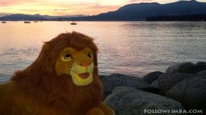 Life sized Simba plush from the Lion King enjoying the sunset in Vanier Park in Vancouver, BC Canada